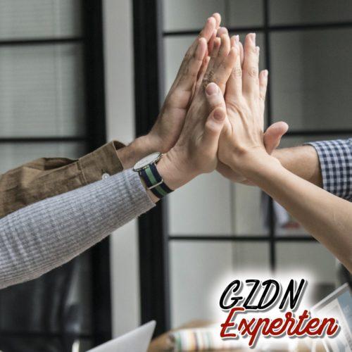 Das GZDN Expertennetzwerk
